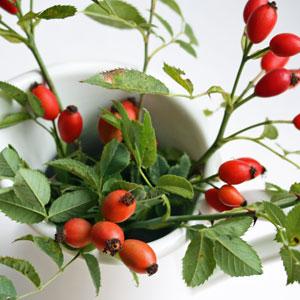trendy rote beerendekoration im herbst. Black Bedroom Furniture Sets. Home Design Ideas
