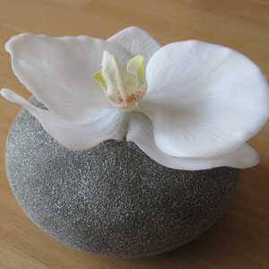 Orchidee in Steinvase